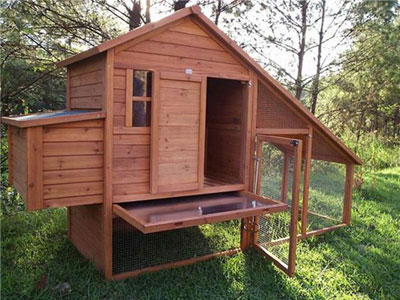 Wooden Chicken House Ddp 8020a China Cages For Small Animals