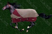 Sell horse blankets
