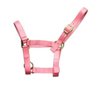 Sell halters