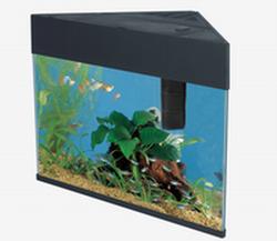 New Triangular Aquarium 20 5ga Aquarium Tanks
