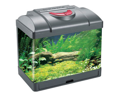 low voltage aquarium(24V)