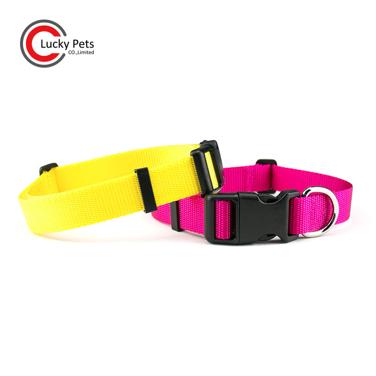 Customized Adjustable Plain Nylon Dog Collar