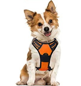 Dog Harnesses, Pet Products, Pet Supplies