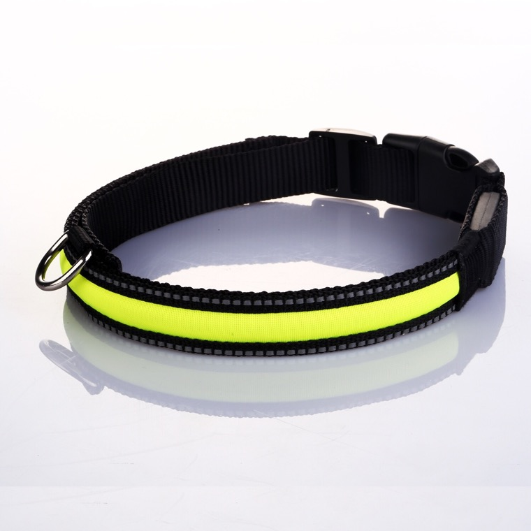 Reflective Stripe Dog Collar Neon Collection