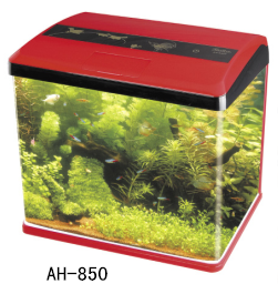 Mini fashionable desktop aquariums