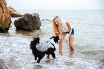 cani.cool ultimate cooling dog vest