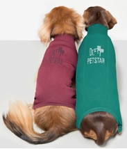 Dr.petstar joint body supporter for Dachshund ( to protect common spine issue for Dachshund)