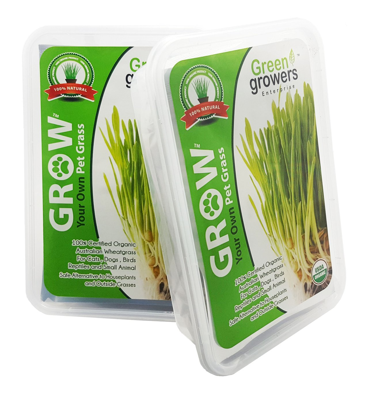 Pet Grass - Cat Grass -  Self Grow KIt