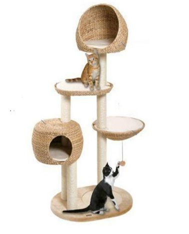 water hyacinth cat tree