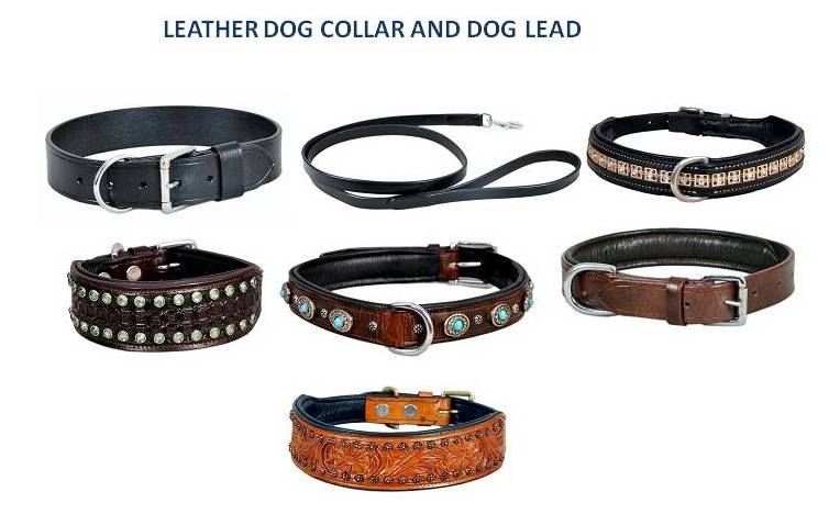Dog Collar ,Dog Leads,