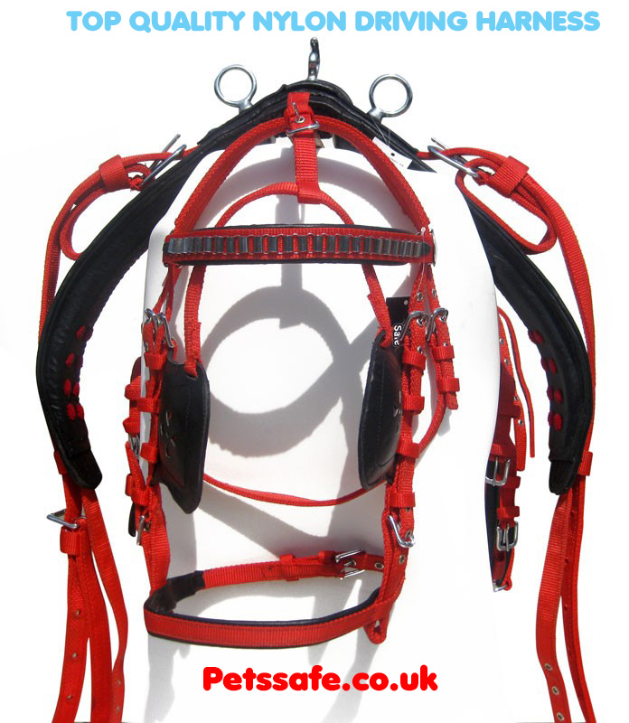 Top Quality Nylon Driving Harness Black/Red Color with Golden Reins