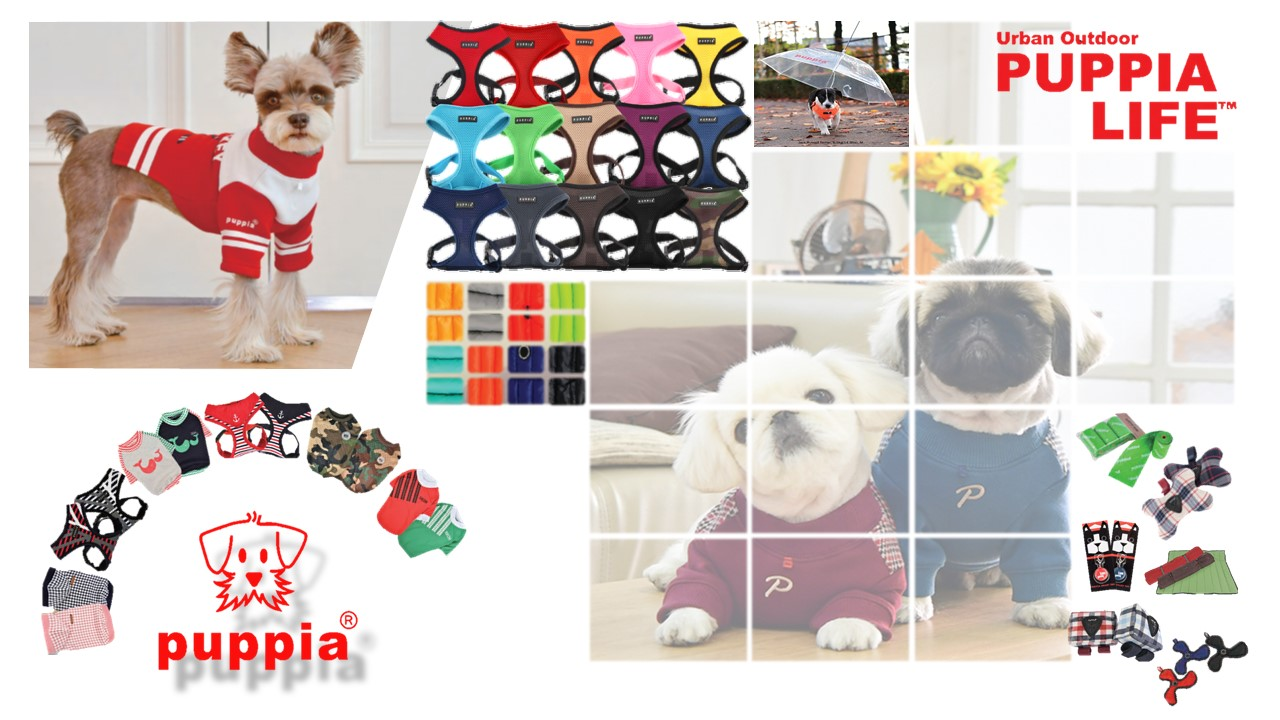 Dog Harness and leash,bed, house,cloth