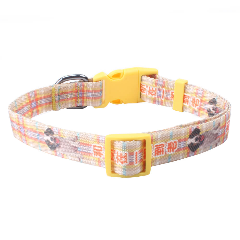 Unique dog collar: On sale custom dog collar with name and logo-QQPETS