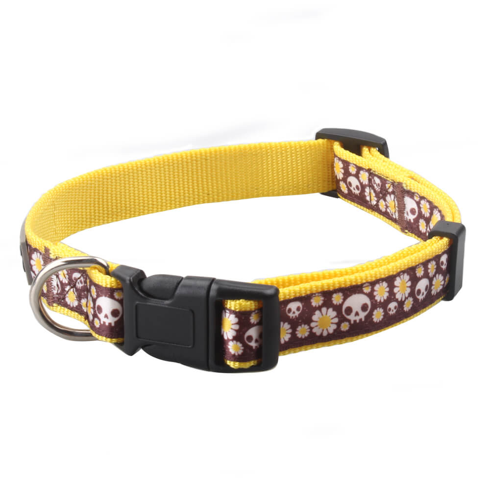 Designer Dog Collars: Best Nylon Dog Collars With Custom Logo Supplier-qqpets