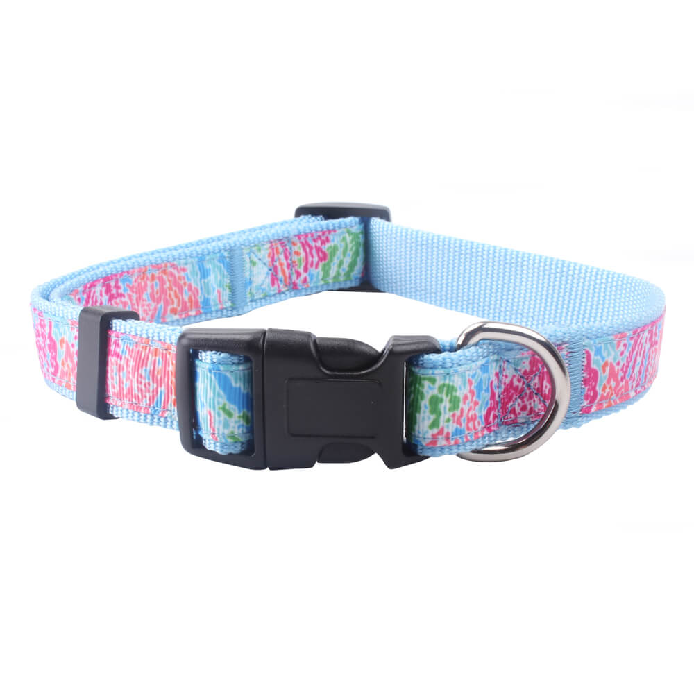 Personalized Dog Collars: Hot sale nylon dog collars wholesale-qqpets