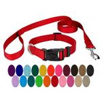 dog leash and collar set
